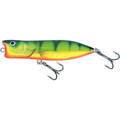 Salmo Rover Floating Hot Perch