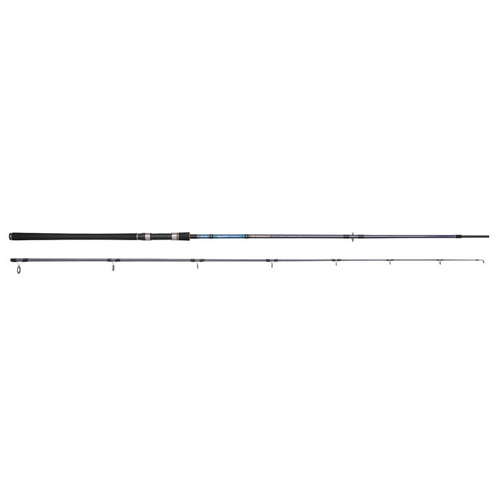 Spro Salty Beast Sea Bass Master 3.30m 40-120gr